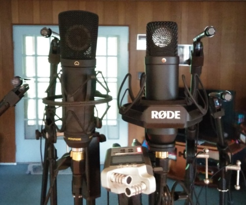 The main mic cluster